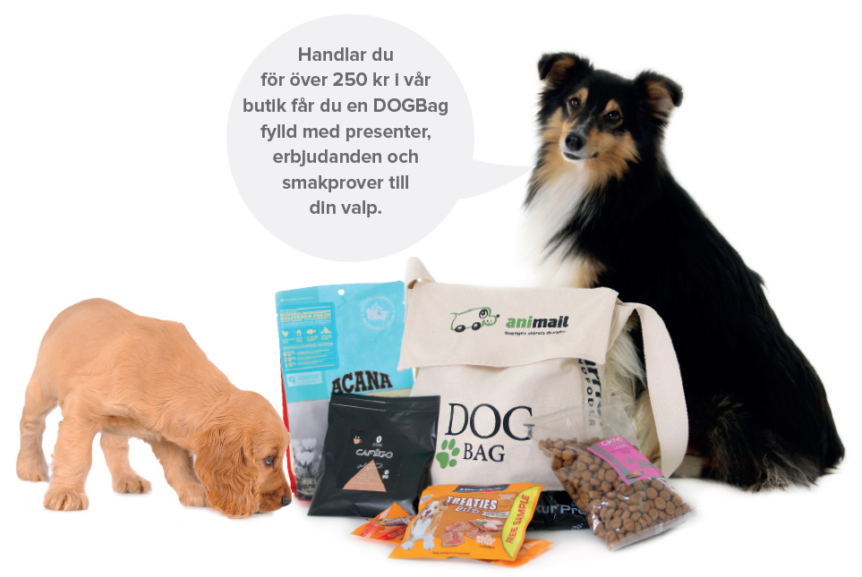 dogbag-med-text-963x645